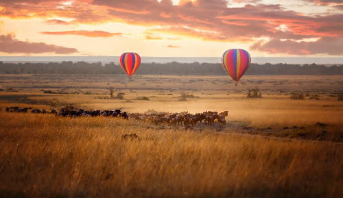 DB 11 Africa balloons